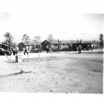 Newly planted trees at Amache (Granada) concentration camp, circa 1942